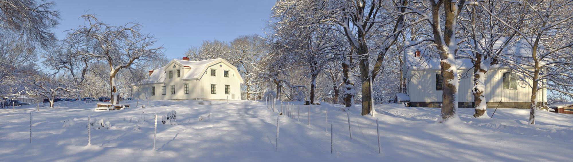 Snöig trädgård framför Ängås Gård.