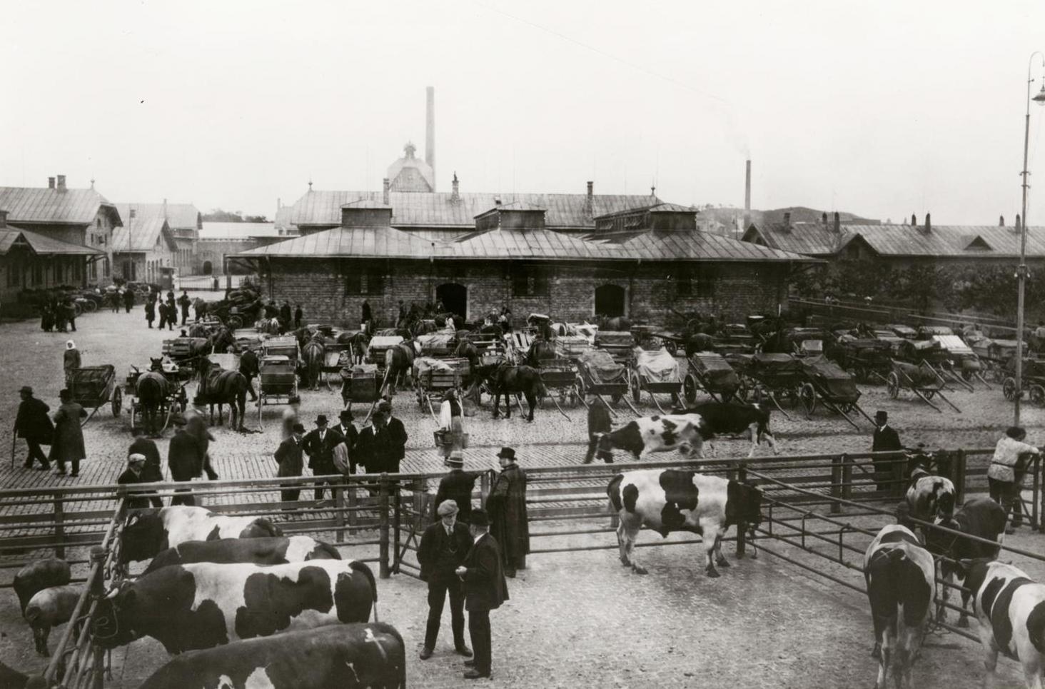 Djurmarknad i Slakthuset, troligtvis i början av 1930-talet