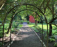 Trädgård med anor från 1700-talet har fått nytt liv