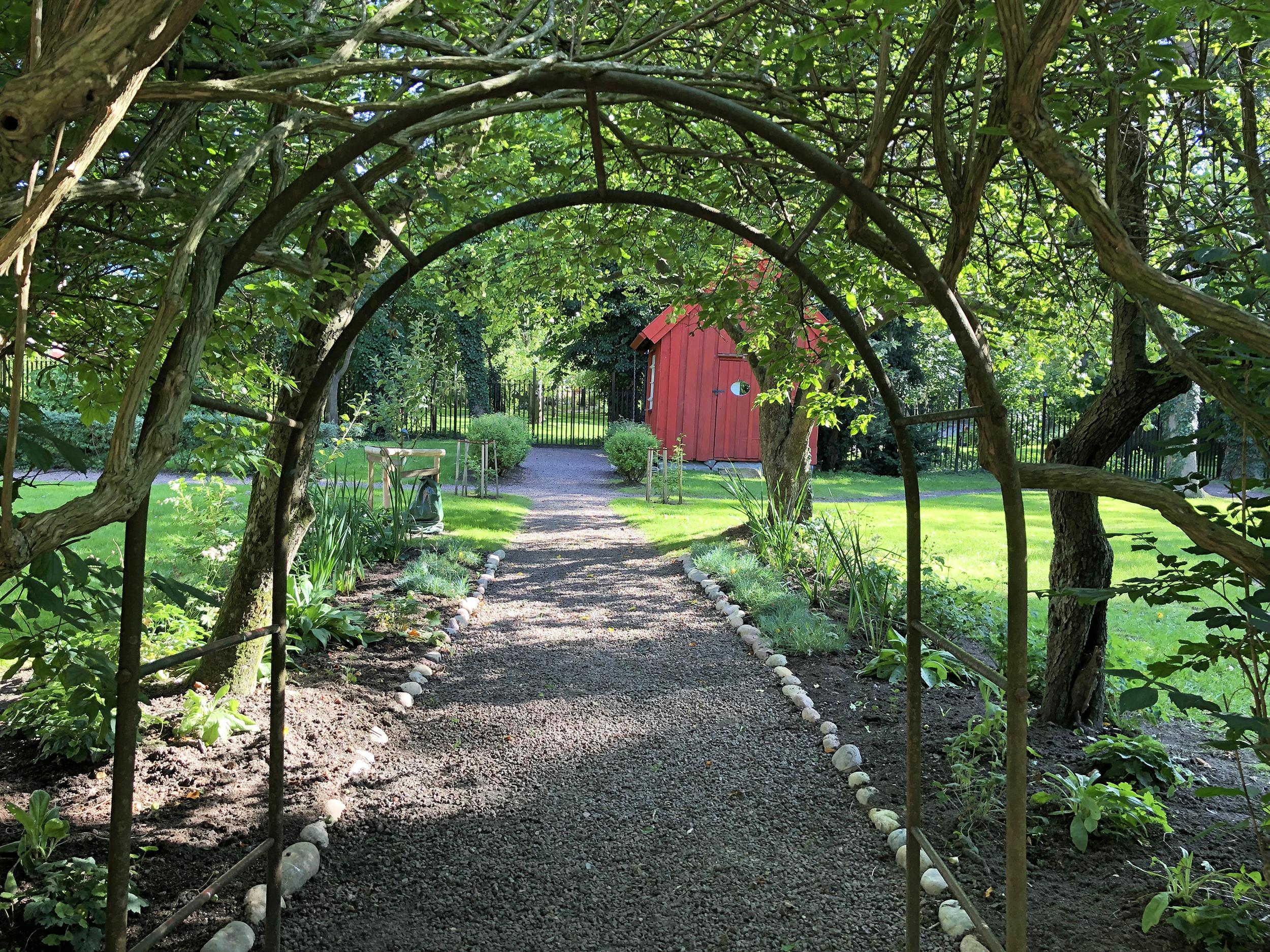 En grusbelagd rosengång i en grönskande trädgård.